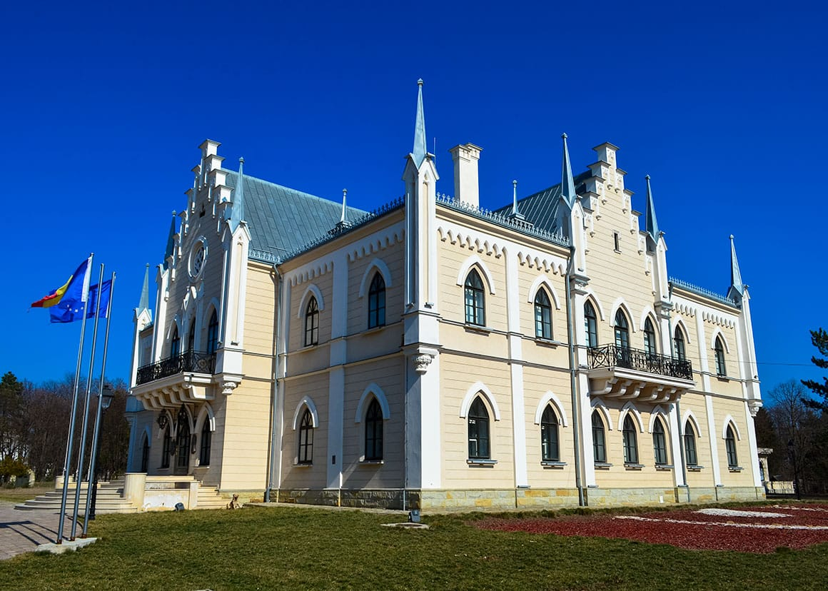 Castelul de la Ruginoasa