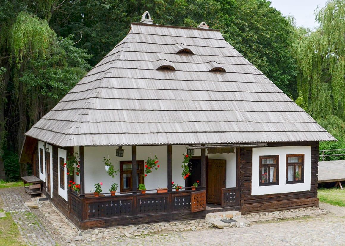 Saru Dornei pub